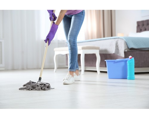 Domestic Maid Package